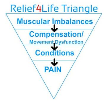 Muscular Imbalances