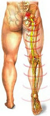 The World's Simplest and Most Effective way to Eliminate  Back Pain... Fast and Naturally