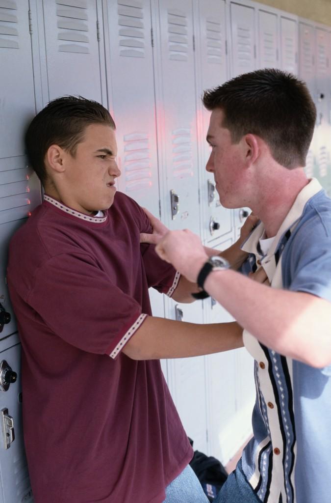 I Always Hated Bullies...