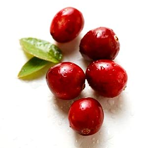 cranberries5 BEAUFORT PERSONAL TRAINER ASKS: IS YOUR SWEET TOOTH CAUSING YOU ACHES?