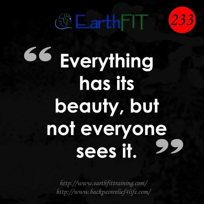 233 EarthFIT Quote of the Day