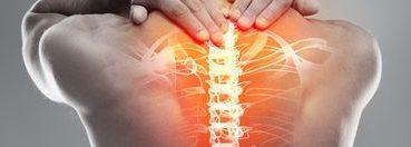 Beaufort Health and Fitness: Neck and Shoulder Program