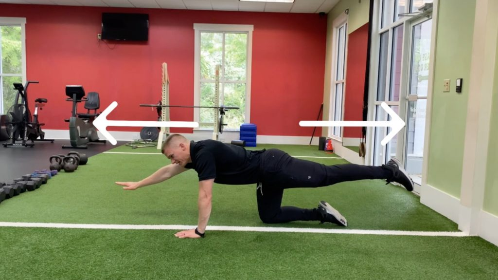 Bird Dog Exercise: How to do it, plus variations