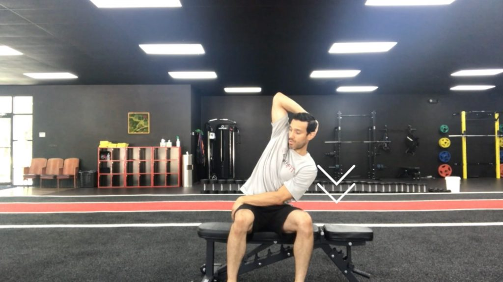 QL Stretch | At Home Stretching Series