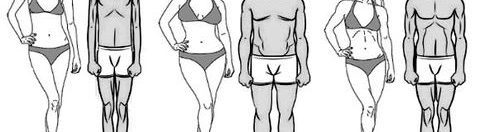 Beaufort Fitness: Body Types and What They Mean